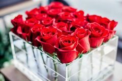A crate of red roses stock photo