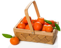 Crate of ripe tangerines with green  leaves Royalty Free Stock Photo
