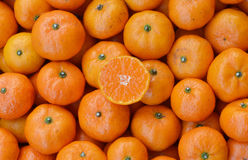 Crate of ripe tangerines. Stock Image