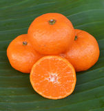 Crate of ripe tangerines. Royalty Free Stock Photos