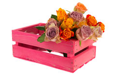 Crate roses Stock Images