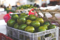 Crate of Round Green Fruits Royalty Free Stock Photos