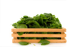 Crate with spinach Royalty Free Stock Photo