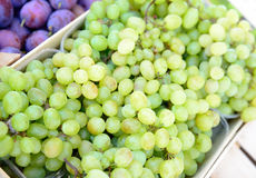 Crate white grapes Stock Photos