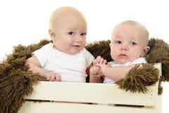 Crated Babies Royalty Free Stock Photos