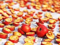 Cratego e frutta secca Immagini Stock