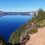 Crater湖森林墙壁 免版税库存照片