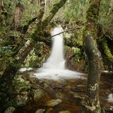 Crater Falls in Cradle Mountain. Beautiful Crater Falls in Cradle Mountain, Tasmania royalty free stock images