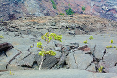 Crater floor Royalty Free Stock Photo