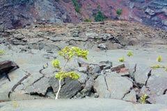 Crater floor Stock Images