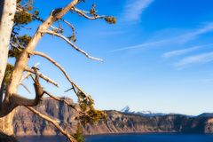 Crater Lake National Park Royalty Free Stock Image