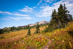 Crater lake trail Stock Photography
