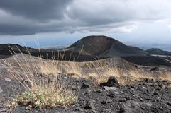 Volcanic landscape. The volcanic landscape with a lateral crater, Mount Etna, Sicily stock photos