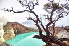 Crater of the volcano Ijen. View from above royalty free stock image