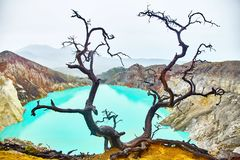 Crater of the volcano Ijen. View from above royalty free stock images
