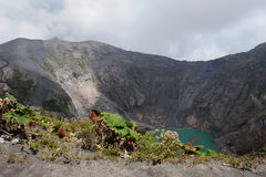 Crater. Volcano plants on the crater  in Costa Rica South America Royalty Free Stock Photography