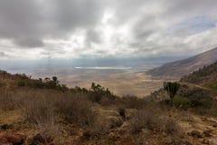 Cratera de Ngorongoro Foto de Stock