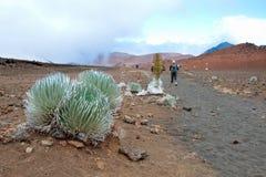 Cratere di Haleakala con le tracce nel parco nazionale di Haleakala su Maui Fotografia Stock Libera da Diritti