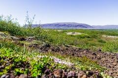 Cratere di Kerid - lago vulcanico del cratere in Selphass, Islanda 11 06,2017 Fotografia Stock