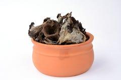 Craterellus cornucopioides in clay bowl Stock Photos