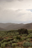 Crateri del monumento Stati Uniti di Nationa della luna Immagini Stock