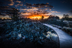 Craters of the Moon Devil`s Orchard at Sunrise. Paved Trail through Devil`s Orchard Trail Craters of the Moon National Preserve Idaho Stock Photo