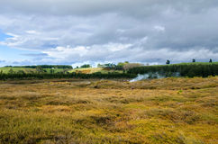 The Craters of the Moon is a geothermal walk located just north of Taupo. Stock Image