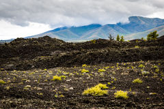 Craters of the Moon National Monument and Preserve. Volcanic Travel Hiking Land Management Stock Photo
