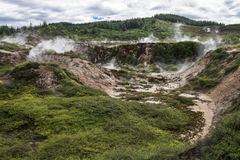 Craters of the moon - New Zealand. The Craters of the Moon is the largest geothermal field in New Zealand royalty free stock images