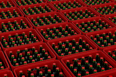 Crates with beer Royalty Free Stock Photos