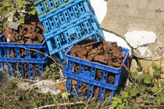 Crates filled with old rusty metal car parts. Plastic crates filled with old rusty metal car parts Royalty Free Stock Photos