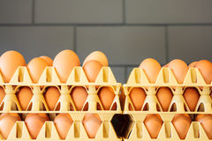 Crates with fresh eggs in front of a grey wall. On an organic chicken farm Stock Photo