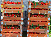 Crates of fresh tomatoes at street market Royalty Free Stock Image