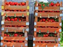 Crates Of Fresh Tomatoes At Street Market Royalty Free Stock Image