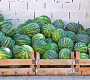 Crates of watermelons Royalty Free Stock Photos