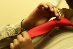 Cravat. Try to tie a red cravat on brown shirt Royalty Free Stock Photo
