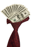 Cravat with dollars. Cravat with dollars isolated on a white background Royalty Free Stock Photos