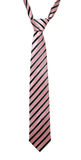 Cravate rayée Images stock