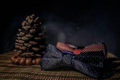 Cravatta a farfalla adorabile Immagini Stock