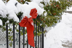 Cravatta a farfalla decorativa del nastro rosso di Natale in forte nevicata Fotografia Stock
