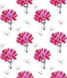 Cravo-da-índia cor-de-rosa da aquarela com borboleta Teste padrão sem emenda para o projeto em um fundo branco Imagens de Stock Royalty Free