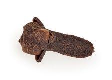 Cravo-da-índia isolado no branco imagem de stock royalty free