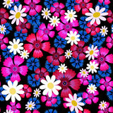 Cravos, centáureas e daisies-01 ilustração royalty free
