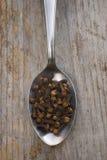 Cravos-da-índia (caryophyllata do Eugenia) Fotografia de Stock Royalty Free