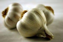 Cravos-da-índia de alho Foto de Stock Royalty Free