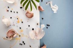 Cravos-da-índia de alho em um fundo bonito da aquarela do branco e Fotografia de Stock Royalty Free
