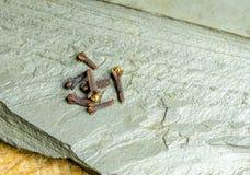 Cravos-da-índia em um fundo de pedra Imagem de Stock Royalty Free