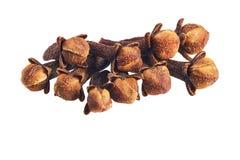 Cravos-da-índia secos da especiaria isolados em um fundo branco Imagem de Stock Royalty Free