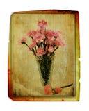 Cravos do vintage no vaso Foto de Stock Royalty Free