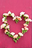 Cravos na coração-forma fotografia de stock royalty free
